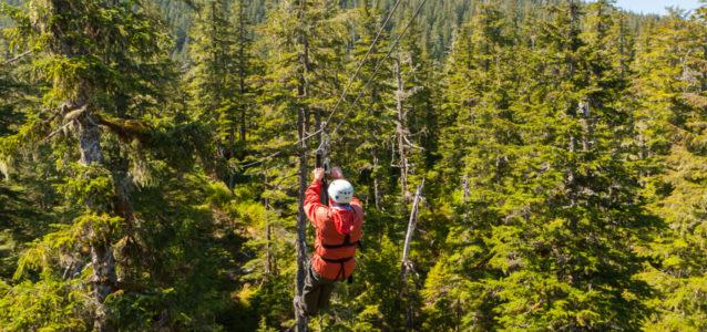 Your tree top adventure expectations