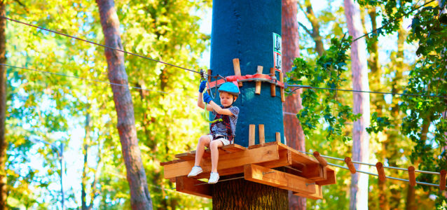 Young boy on a tree top adventure sitting on a deck